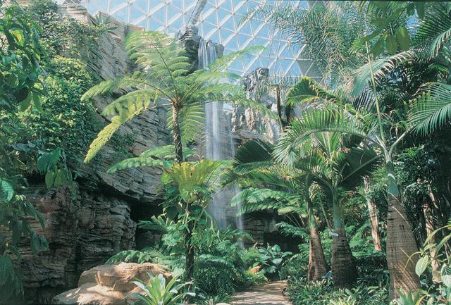 KL0428-県立植物-室内3